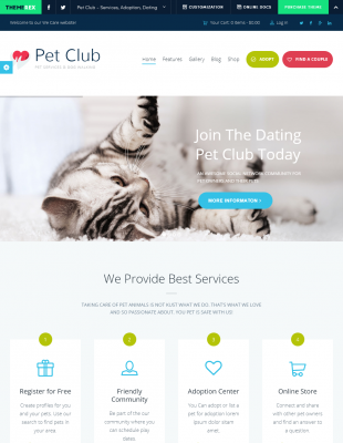 Beispiele für die Online-Dating-Beschreibungen