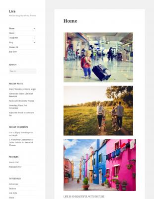 Lira - Amazon Affiliate Blog WordPress Theme | WordPress Themes ...